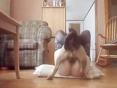 Chica en pantys con perro