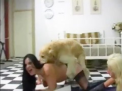 Una buena mamada